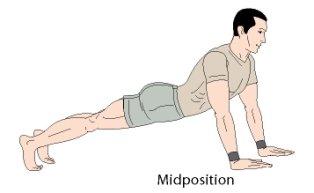 bodyweight exercises push up