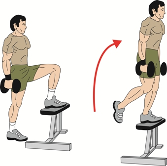 Barbell Amp Dumbbell Stepups Exercise Build Strong Glutes