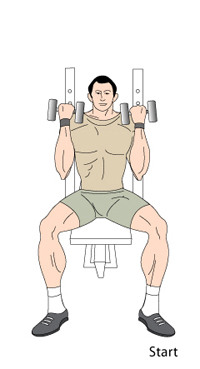 http://www.exercisegoals.com/images/arnold1.jpg
