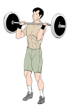 barbell front squat start position