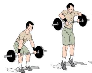 Weight Training for Wrestling | Strength Training for Wrestlers