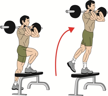 Barbell & Dumbbell Stepups Exercise | Build Strong Glutes ...