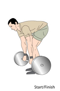 Barbell Rows Start Position