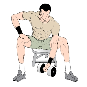 Bicep exercises for maximum growth