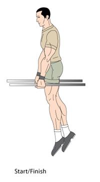 Bar Dips Start Position
