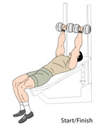 Incline Dumbbell Press Midpoint Position