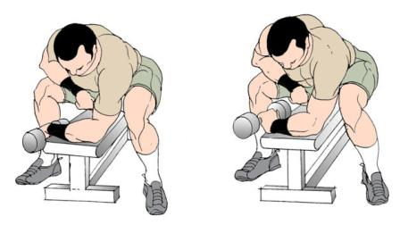 Of Full Arm Extension See Below If You Do Not Know How To Perform The Exercise And Make Sure Notice Very Small Range Motion On