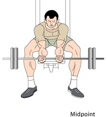 Reverse Wrist Curls End Position
