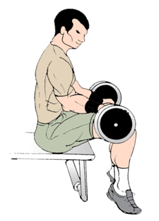 Seated Calf Raises How To Do Seated Calf Raise Exercise