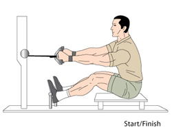 proper form for lat pulldown and seated rows - Bodybuilding.com Forums