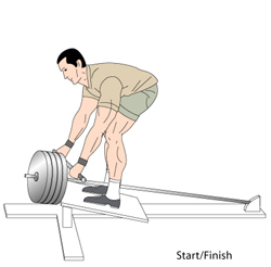 T bar rows start Position