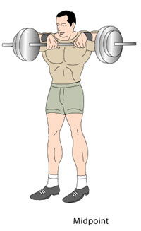 Upright Rows Midpoint Position