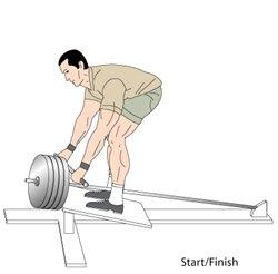 T bar rows start Position