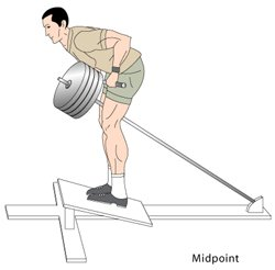T bar rows Midpoint position